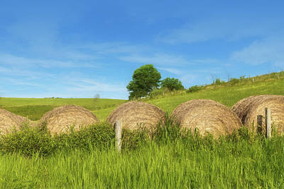 Bales Photograph - Ohio Landscape In Summer by Tom Mc Nemar
