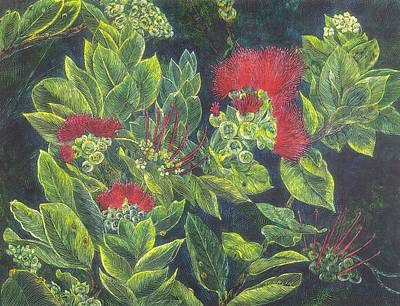 Volcano Goddess Painting - Ohio Lehua by Cynthia Conklin