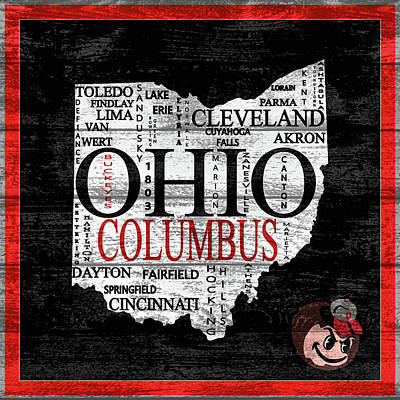 Mixed Media - Ohio State Map Barn Door by Dan Sproul