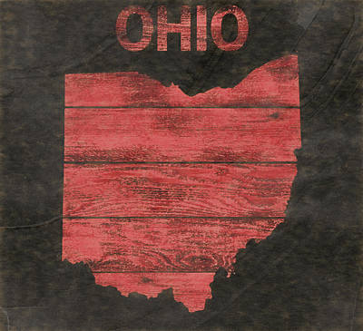 Mixed Media - Ohio State Outline Barn Door by Dan Sproul