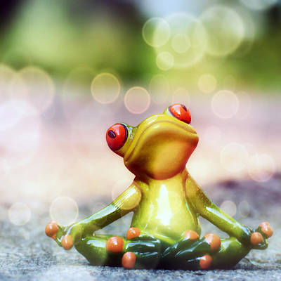 Frog Photograph - Ohm by Jacky Gerritsen