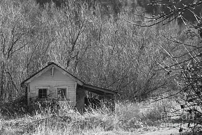 Photograph - Ohop Abandon by Ansel Price