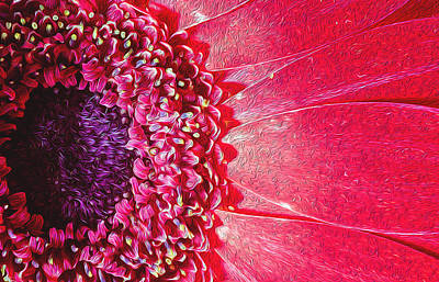 Photograph - Oil Painting Poster Of A Bright Pink Chrysanthemum by John Williams