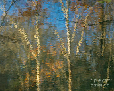 Photograph - Oil Painting Trees by Phil Spitze