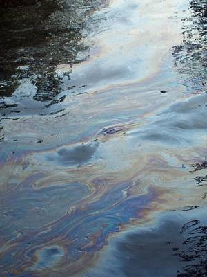 Photograph - Oil Slick  by Michelle  BarlondSmith