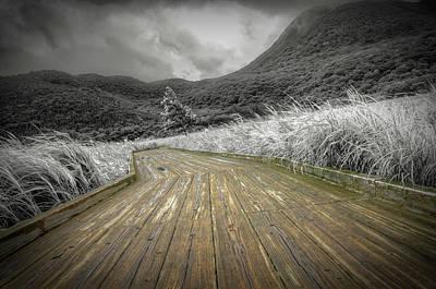 Photograph - Oita Valley Boardwalk by Greg McLain