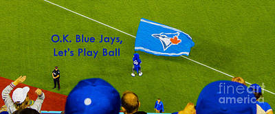 Photograph - O.k. Blue Jays Let's Play Ball by Nina Silver
