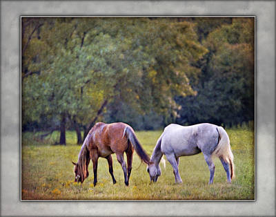 Photograph - Ok Horse Ranch_2b by Walter Herrit