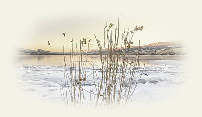 Winter Night Photograph - Okanagan Glod by John Poon