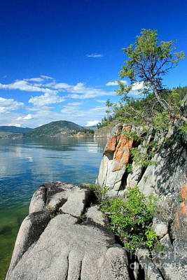 Photograph - Okanagan Headland by Frank Townsley