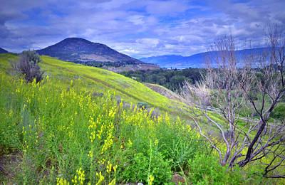 Photograph - Okanagan Landscape by Tara Turner