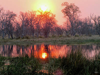Okavango Delta Art Print