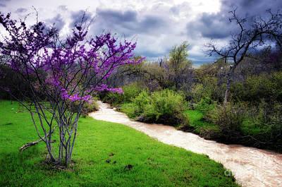 Photograph - Oklahoma Spring Storm by Tamyra Ayles