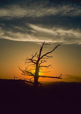 Photograph - Oklahoma Sunset by Robert Potts