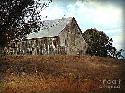 Photograph - Ol White Barn by Bobbee Rickard