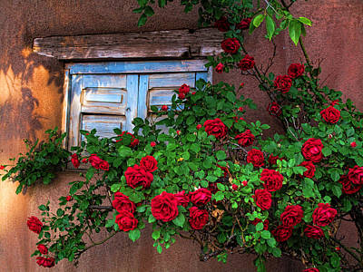 Old Adobe With Roses Art Print