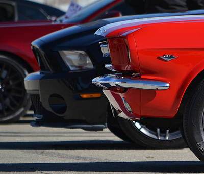 Photograph - Old And New Mustangs by Dean Ferreira