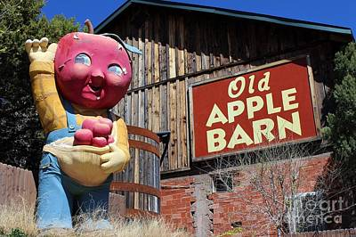 Photograph - Old Apple Barn by Natalie Ortiz