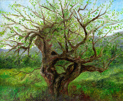 Painting - Old Apple Tree by FT McKinstry