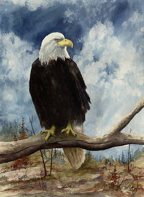 Eagle Feathers Painting - Old Baldy by Sam Sidders