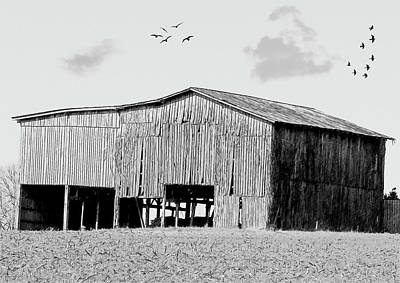 Photograph - Old Barn 275 B-w by Ericamaxine Price