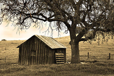 Luis Photograph - Old Barn And Oak by Kathy Yates