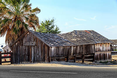 Photograph - Old Barn And Palm Tree by Gene Parks