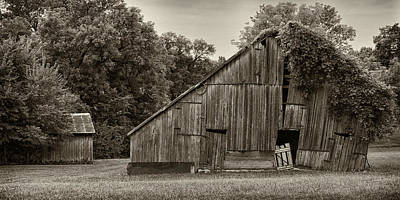 Photograph - Old Barn And Shed Dsc05901 by Greg Kluempers