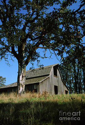 Photograph - Old Barn Bald Hill Park Corvallis Oregon by Rick Bures