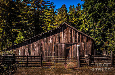 Photograph - Old Barn Coleman Valley Road by Blake Webster