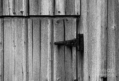 Photograph - Old Barn Door by Timothy Johnson