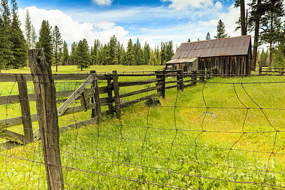 Photograph - Old Barn In California by Ben Graham