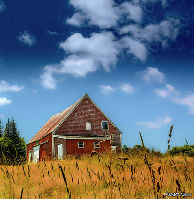 Digital Art - Old Barn In Cape Breton by Ken Morris