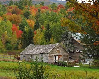 Photograph - Old Barn In Fall by Donna Cavanaugh