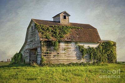 Photograph - Old Barn In Iowa by Lynn Sprowl