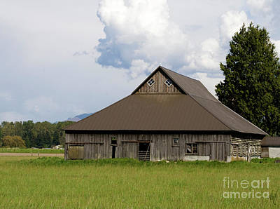 Photograph - Old Barn In Springtime by Victoria Harrington