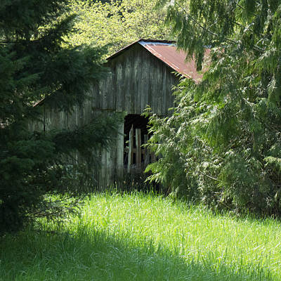 Photograph - Old Barn In The Woods by HW Kateley
