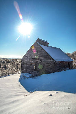Photograph - Old Barn In Winter  by Alana Ranney