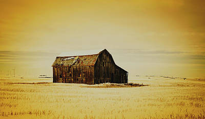 Photograph - Old Barn In Winter by Unsplash