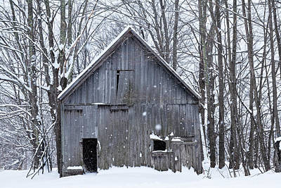 Photograph - Old Barn In Winter Woods by Alan L Graham