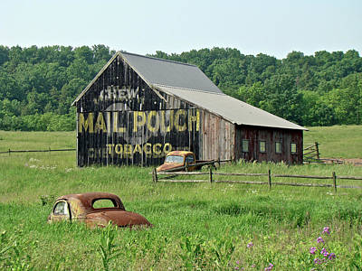 Split Rail Fence Photograph - Old Barn Mail Pouch Tobacco Advertising by Mother Nature