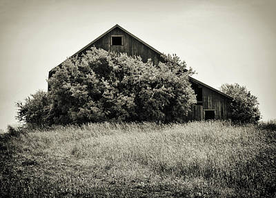 Photograph - Old Barn Overgrown by Marvin Borst