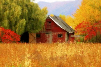 Old Barn Quebec  Art Print