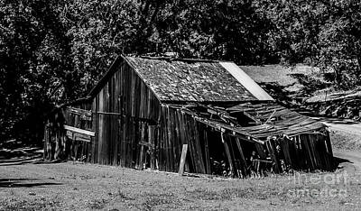 Photograph - Old Barn River Road Sonoma County Black And White by Blake Webster