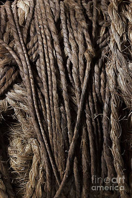 Photograph - Old Barn Rope by Mike Eingle