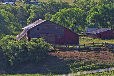 Photograph - Old Barn Summer Day by Alana Thrower