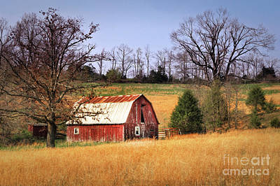 Photograph - Old Barn by Tamyra Ayles