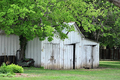 Photograph - Old Barn by Teresa Blanton