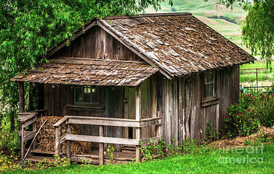 Photograph - Old Cabin Tolay Ranch Sonoma County by Blake Webster