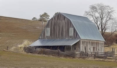 Photograph - Old Barn by Wes and Dotty Weber